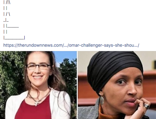 Threatening Members Of Congress Is Fine On Facebook